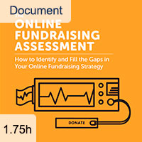 The Online Fundraising Assessment