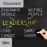 Executive Directors Guide: Leadership
