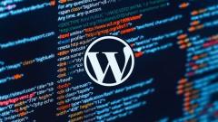 WordPress for Beginners Master WordPress in No Time