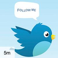 8 Ways to Become a Tweetstar