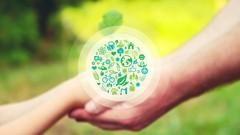 EPIC: Ecological Principles Intensive Course