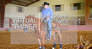 Best Ground for an Arena – Tom McCutcheon