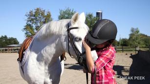 Getting started with horses, from US Equestrian (USEF)