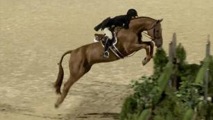 Hunters & Equitation Training Videos, from US Equestrian (USEF)