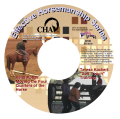 """""""Soft Touch"""" Training and Moving the Four Quarters of the Horse DVD ($45/$34)"""