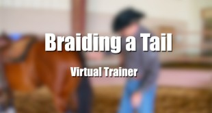 Braiding a Tail – Tom McCutcheon